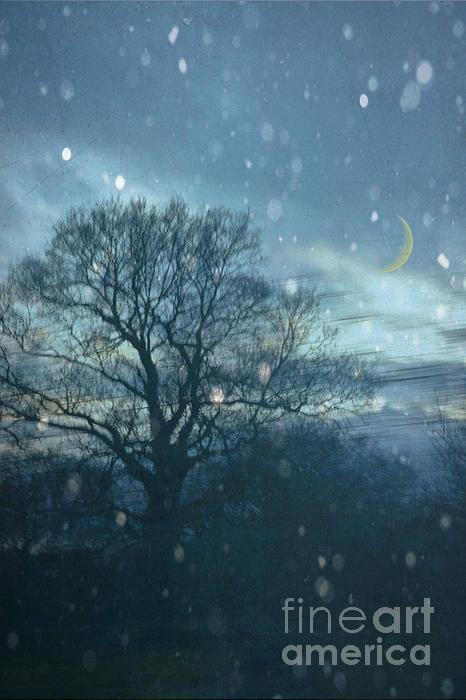 Winter Evening Print by Jan Bickerton