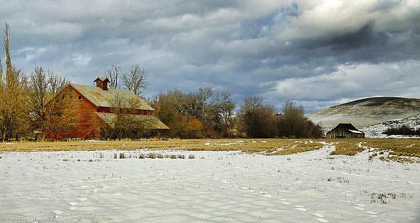 Winter Farm Print by Steve McKinzie
