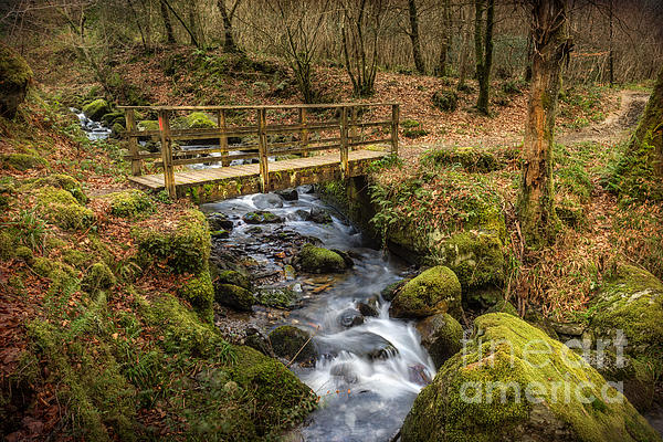 Winter Footbridge Print by Adrian Evans
