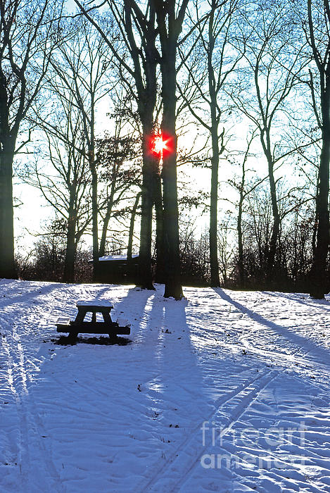 ImagesAsArt Photos And Graphics - Winter Forest Sunset