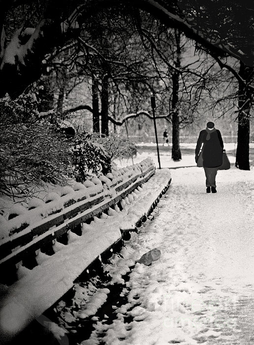Winter In Central Park Print by Madeline Ellis