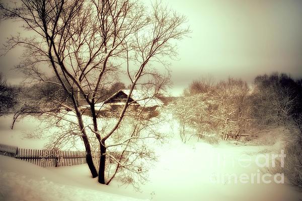 Winter Loneliness Print by Jenny Rainbow