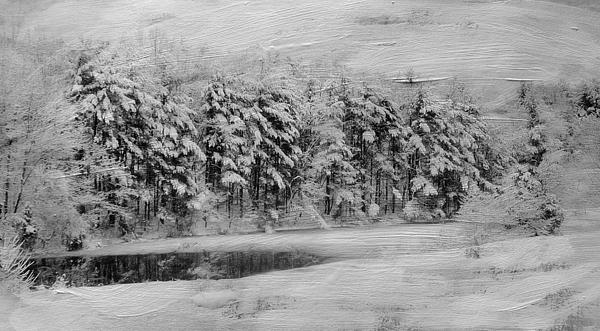 Winter Pond Print by Kathy Jennings