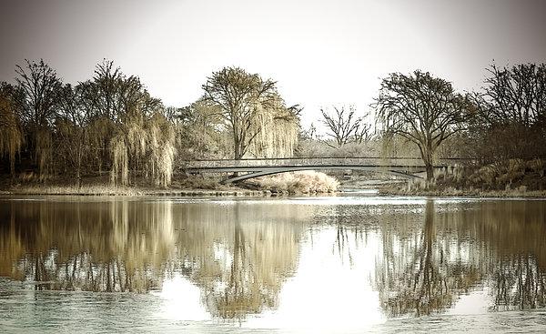 Winter Reflection Landscape Print by Julie Palencia