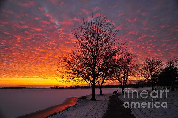Winter Sunset Print by Terri Gostola
