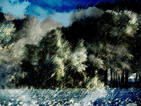 Lenore Senior and Dawn Senior-Trask - Winter Trees