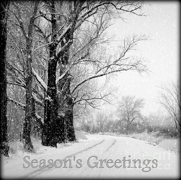 Winter White Season's Greetings Print by Carol Groenen