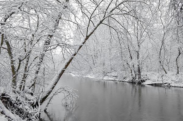 Winter Wonderland Print by Brian Stevens