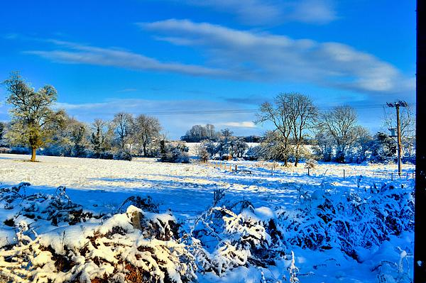 Winters View Print by Dave Woodbridge
