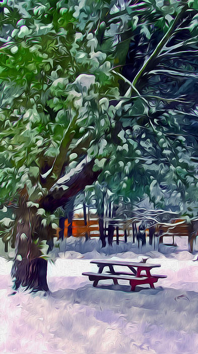 Wintry  Snowy Trees Print by Lanjee Chee