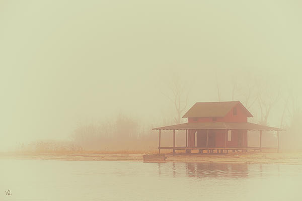 Within The Fog Print by Karol  Livote