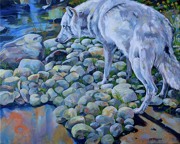 Wolf Creek Print by Derrick Higgins