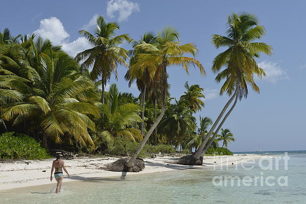 Woman Walking By Coconuts Trees On A Pristine Beach Print by Sami Sarkis