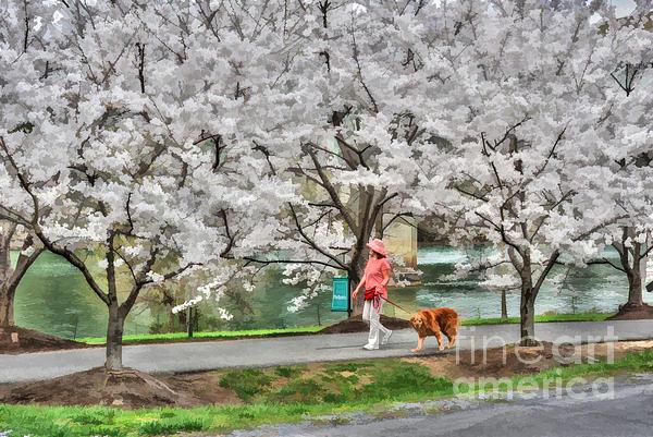 Woman Walking Dog  Rail To Trail Print by Dan Friend