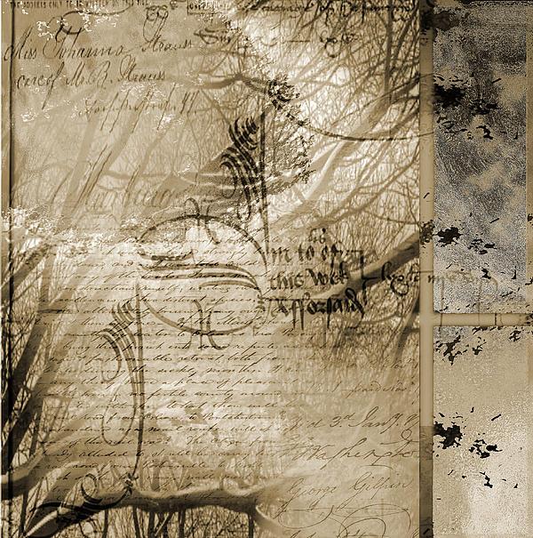 Wonder Print by Yanni Theodorou
