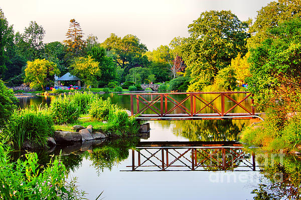 Wood Bridge Reflection Print by Judy Palkimas