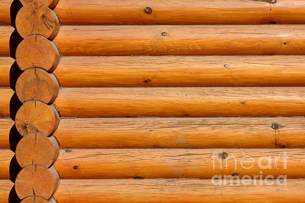 Wooden Logs Wall Background Print by Kiril Stanchev