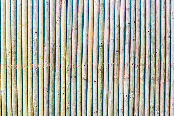 Wooden Poles Print by Tom Gowanlock