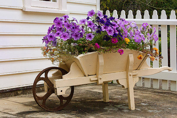 Linda Phelps - Wooden Wheelbarrow Full of Flowers