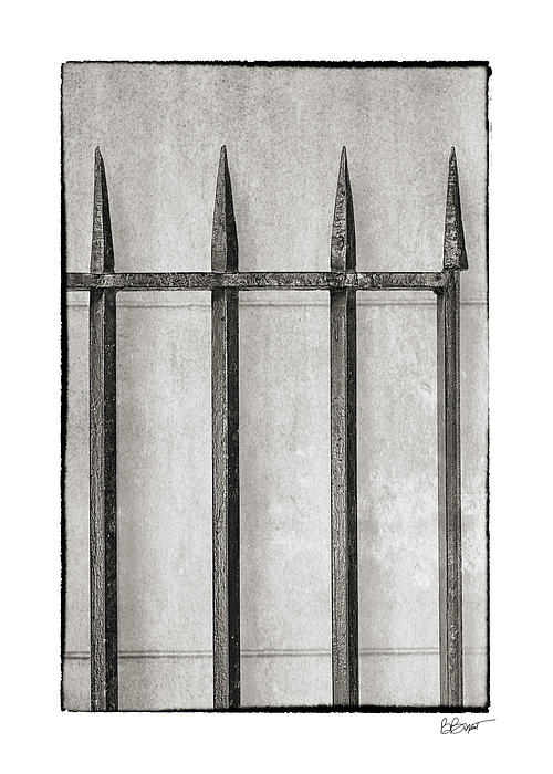 Wrought Iron Gate In Black And White Print by Brenda Bryant