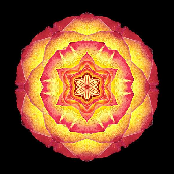 Yellow And Red Rose IIi Flower Mandala Print by David J Bookbinder