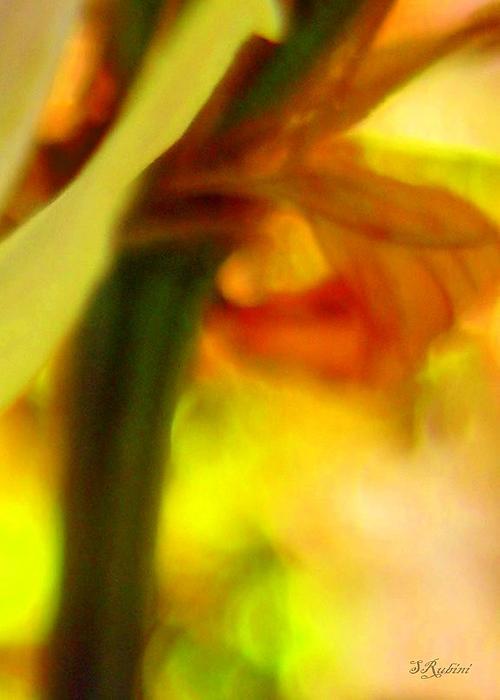 Yellow Floral No. 1 Print by Sandy Rubini
