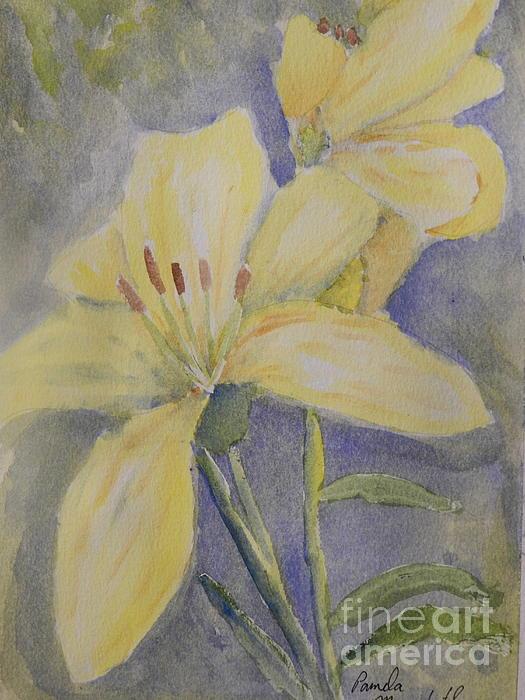 Pamela  Meredith - Yellow Flowers