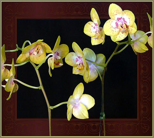 Yellow Orchids Print by Mindy Newman