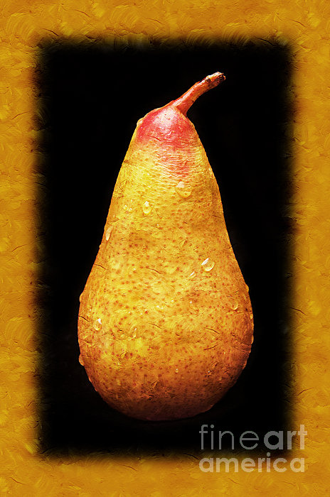 Andee Design - Yellow Pear Painterly