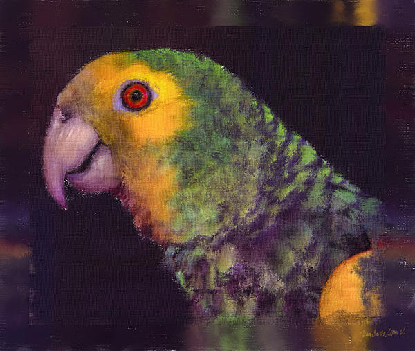 Juan Carlos Lopez - Yellow shouldered Parrot Amazonas barbadensis