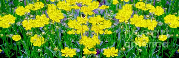 Yellow Wild Flowers Print by Jon Neidert