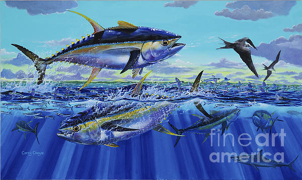 Yellowfin Bust Off0083 Print by Carey Chen