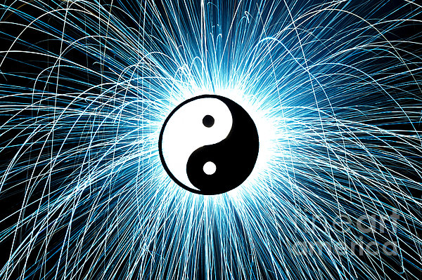Yin Yang Print by Tim Gainey