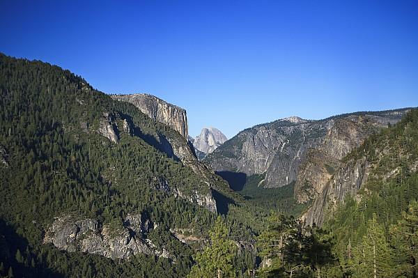 Yosemite Scenic Print by Charmian Vistaunet