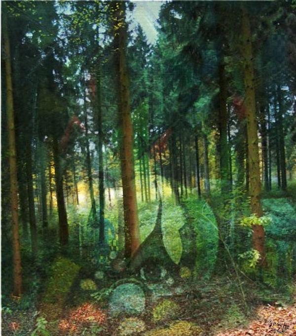 Zauberwald Print by Gertrude Scheffler