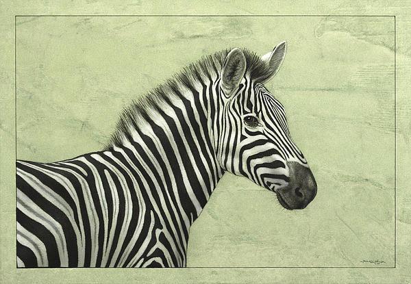 Zebra Print by James W Johnson
