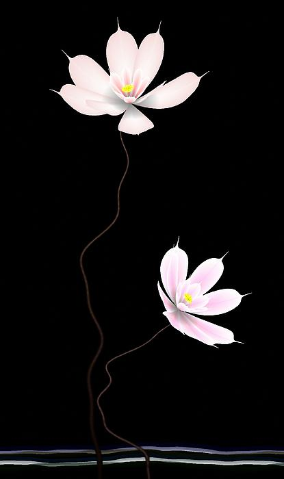 Zen Flower Twins With A Black Background Print by GuoJun Pan
