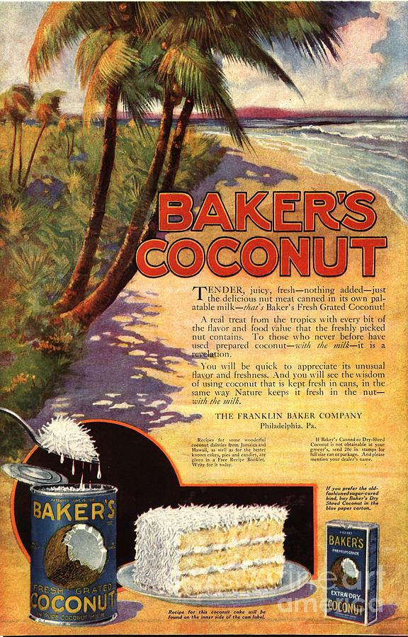 1910s Usa Bakers Coconuts Cakes Baking Drawing  -  1910s Usa Bakers Coconuts Cakes Baking Fine Art Print