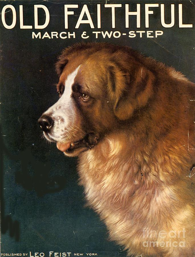 1910s Usa Old Faithful Dogs Drawing