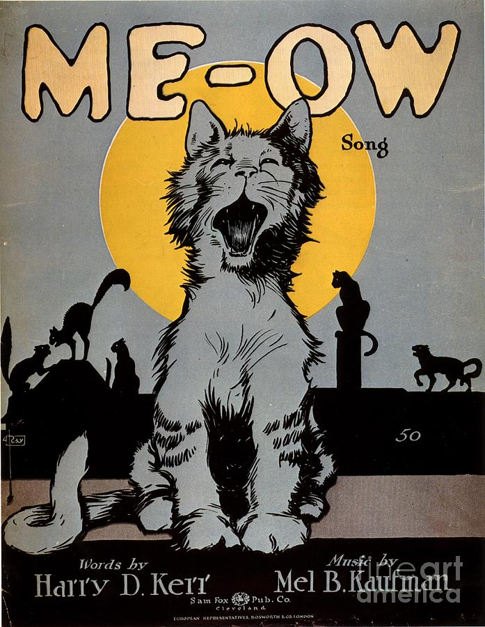 1920�s Drawing -  1920s Usa Cats Me-ow Meow by The Advertising Archives