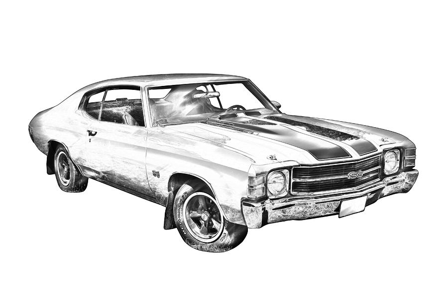 Stock Photo Sketch Various Fruits Illustration White Background Image32202470 likewise Car Drawings Outline furthermore Car Detailing Clipart Black And White 21064 likewise Female Pelvic Floor as well Ford F 350 For Sale C137208. on muscle car illustration