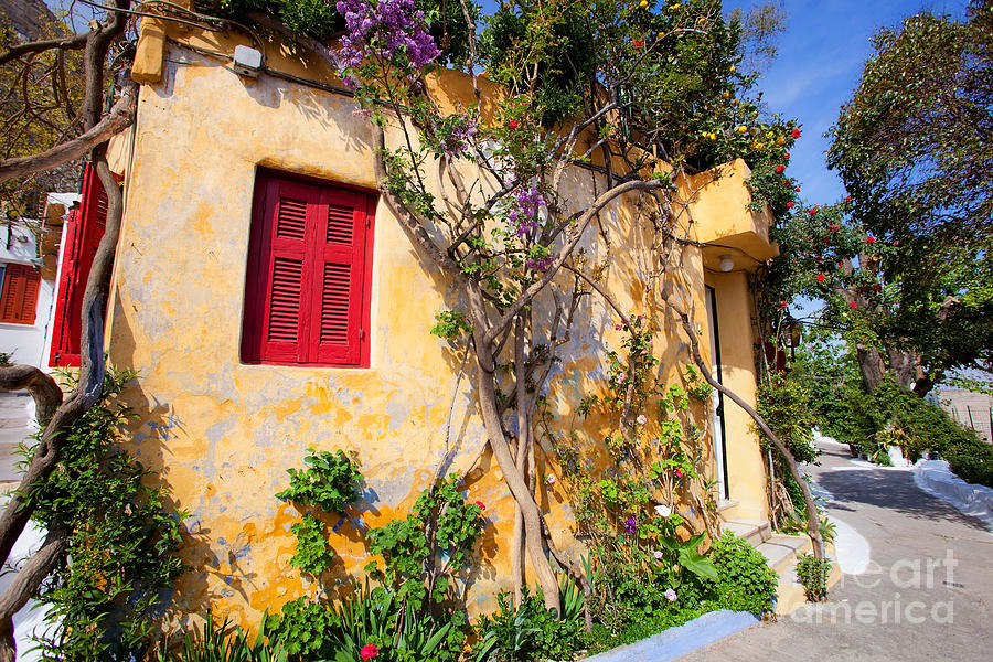 Athens Photograph -  Decorated House With Plants by Aiolos Greek Collections