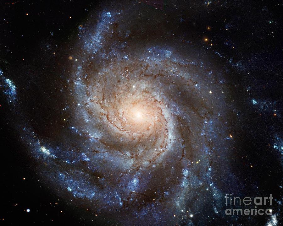 Messier 101 Photograph