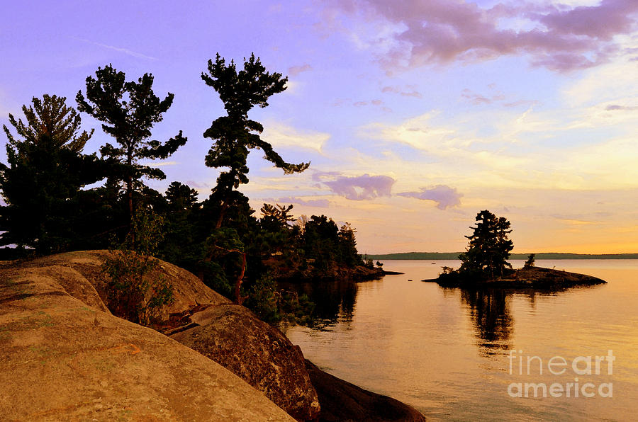 Pines Whisper Canoe Lake  Photograph