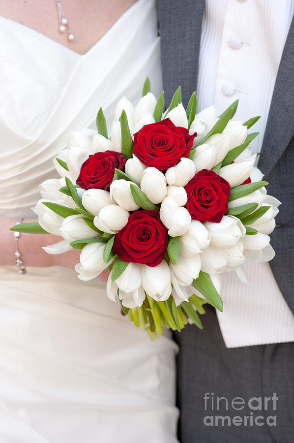 Red Rose And White Tulip Wedding Bouquet Photograph By Lee Avison