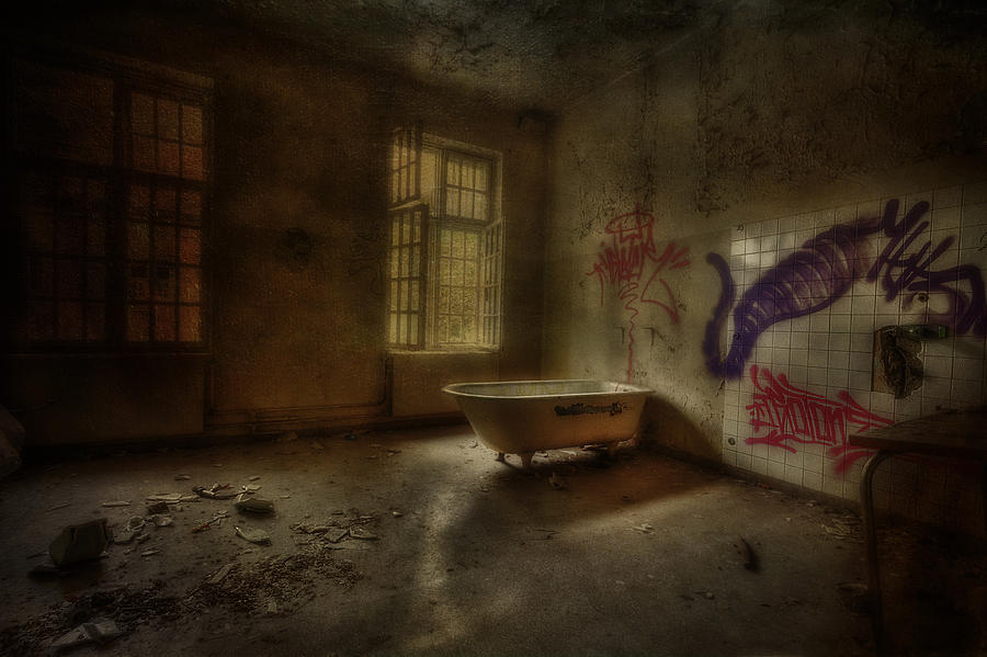 The Asylum Project - Bathing Time Photograph
