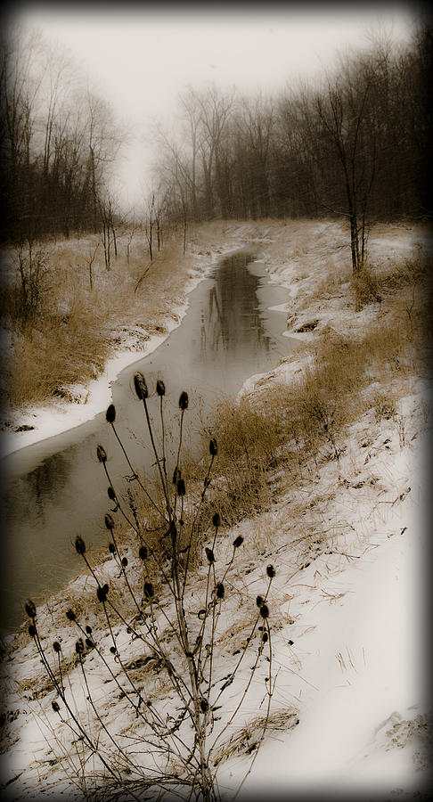 020213-102   Prairie Winter Fantasy IIi Photograph  - 020213-102   Prairie Winter Fantasy IIi Fine Art Print