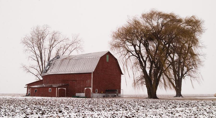 020213-57   Prairie Winter IIi Photograph