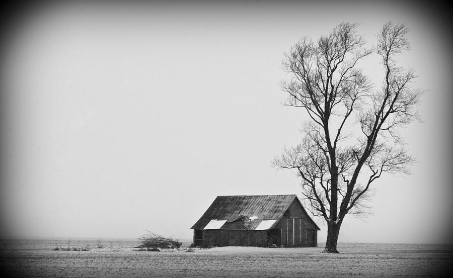 020213-73   Prairie Winter Photograph