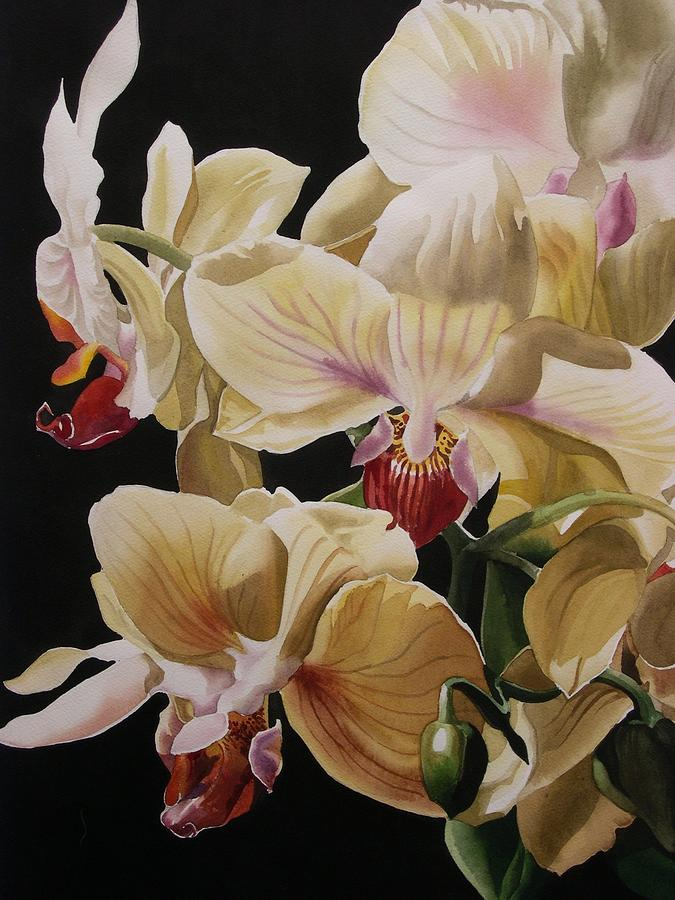 Yellow Orchids  Painting  -  Yellow Orchids  Fine Art Print